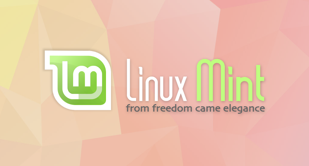How to Automount A Drive or Partition at Boot in Linux Mint